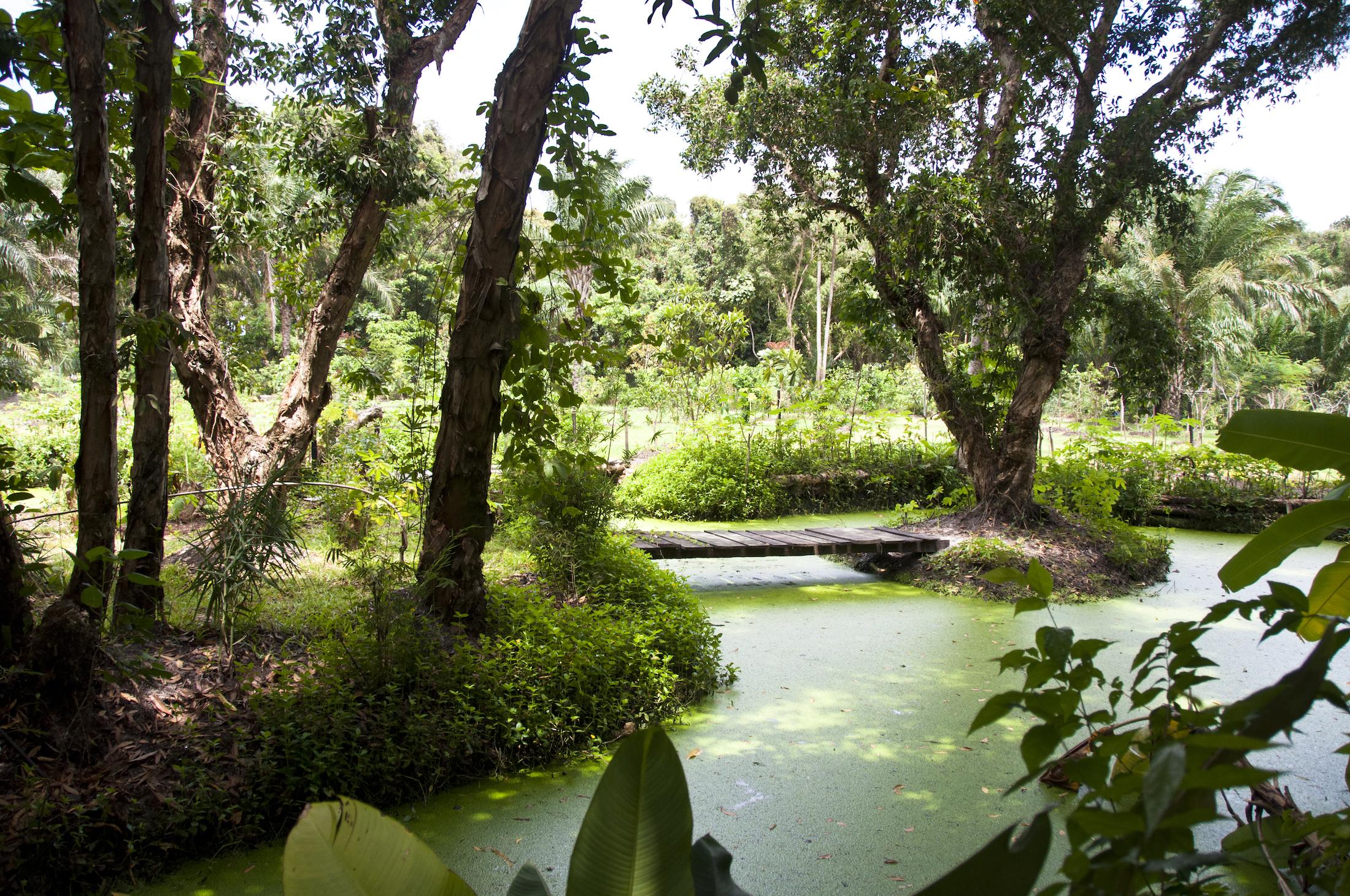Les jardins de l'Hôtel du Parc de Port-Gentil au Gabon