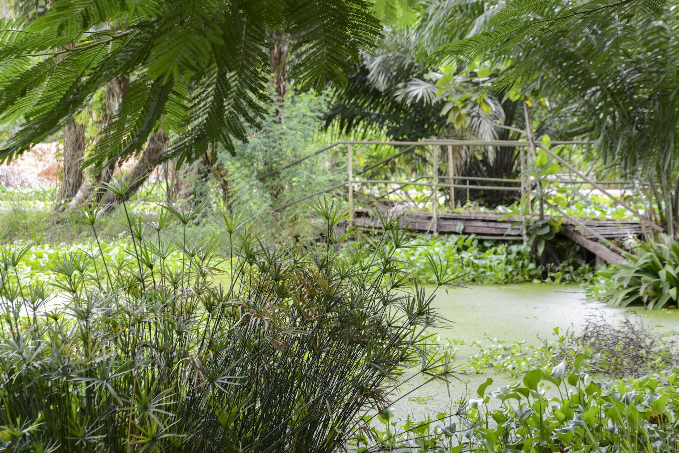 Le parc de l'Hôtel du Parc